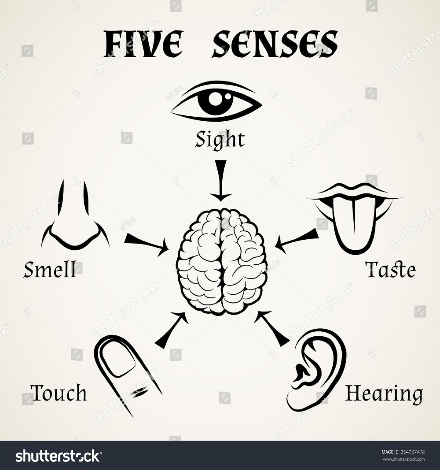 Five Senses Icons Human Eye Nose Stock Vector