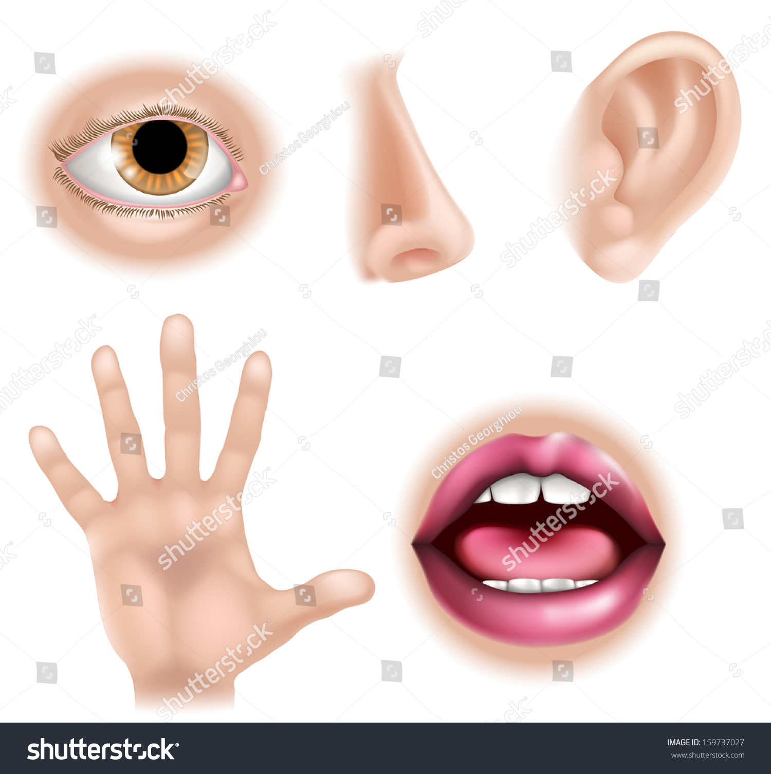 Five Senses Illustrations Hand Touch Eye Stock Vector