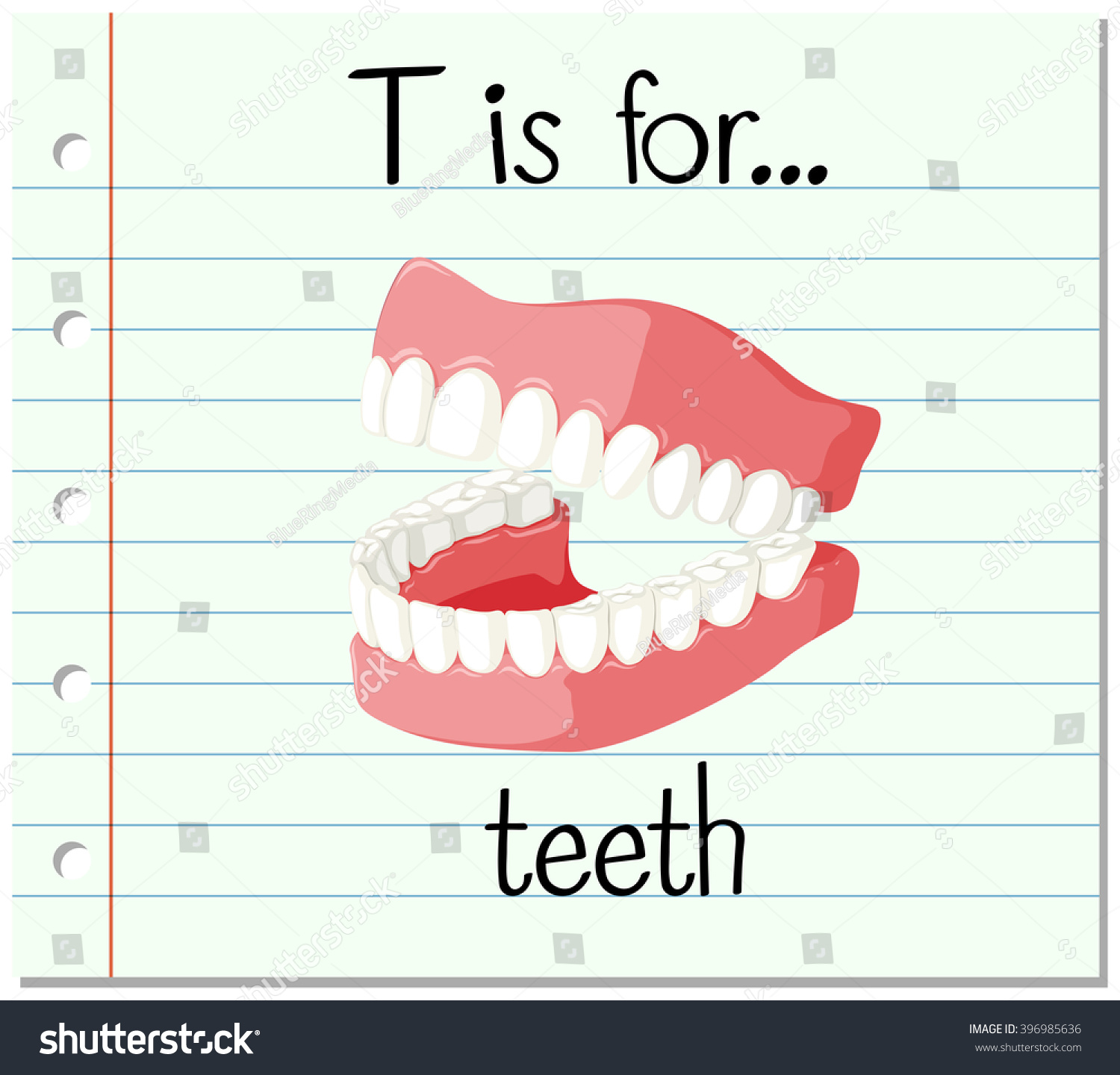 Flashcard Letter T Is For Teeth Illustration