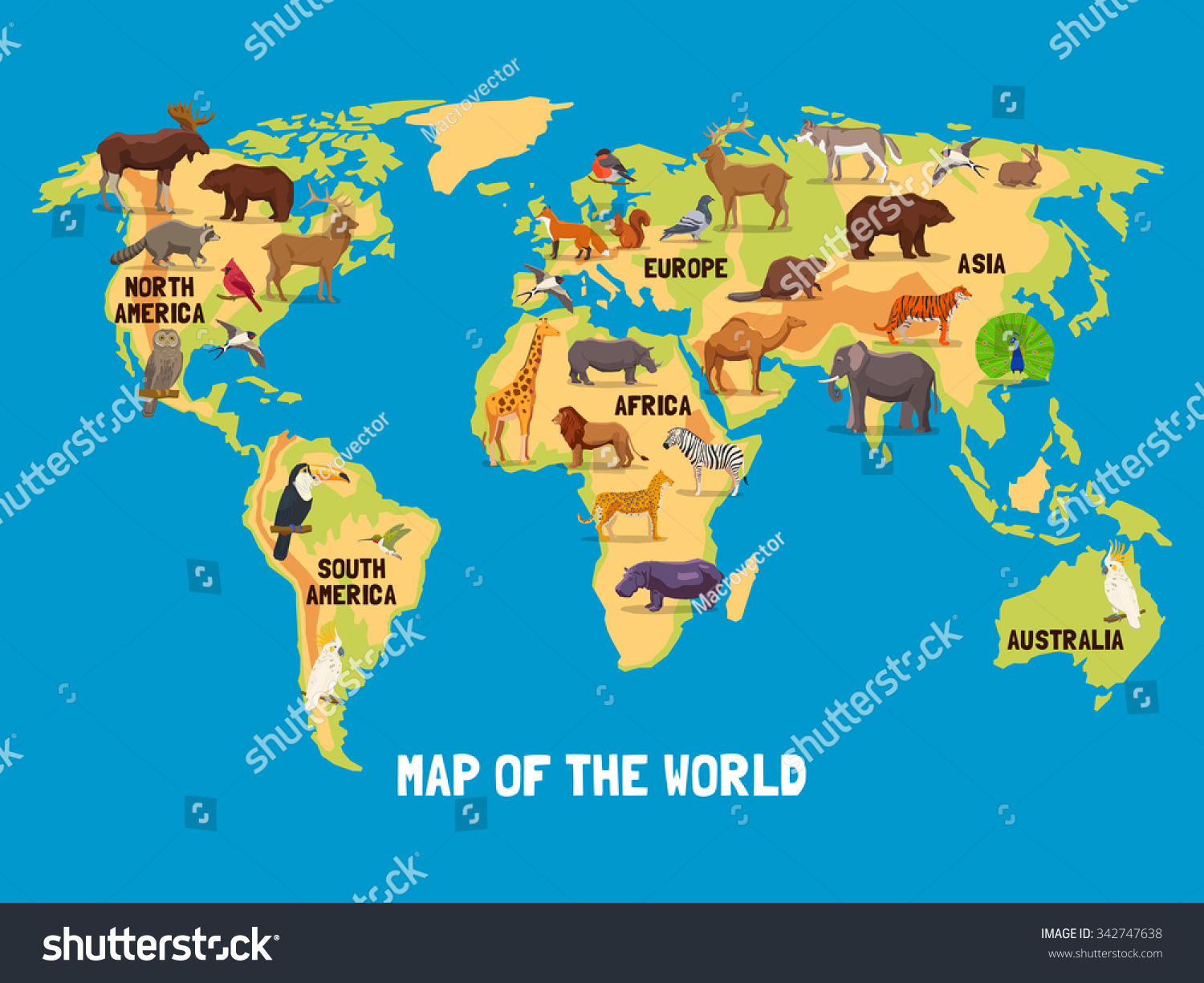 Flat Map World Animals Living Different Stock Vector