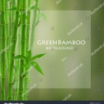 Green Bamboo Vector Illustration Stock Vector Royalty Free