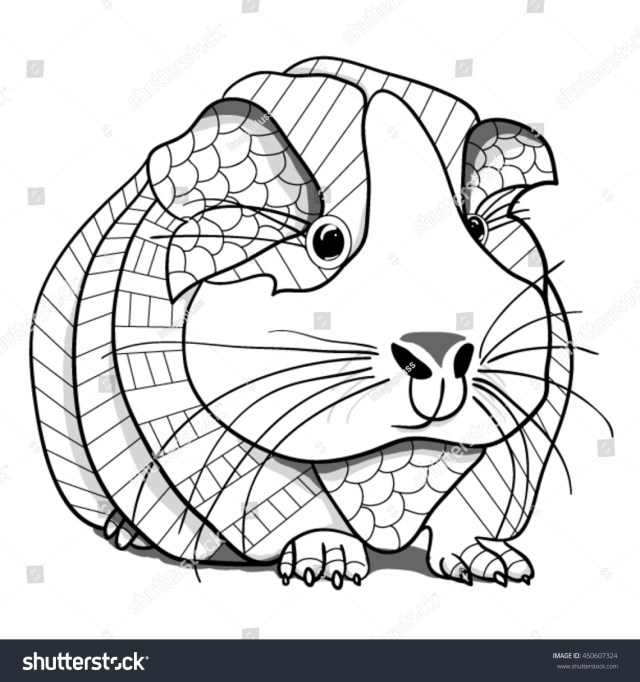 Guinea Pig Coloring Page Stock Vector (Royalty Free) 28