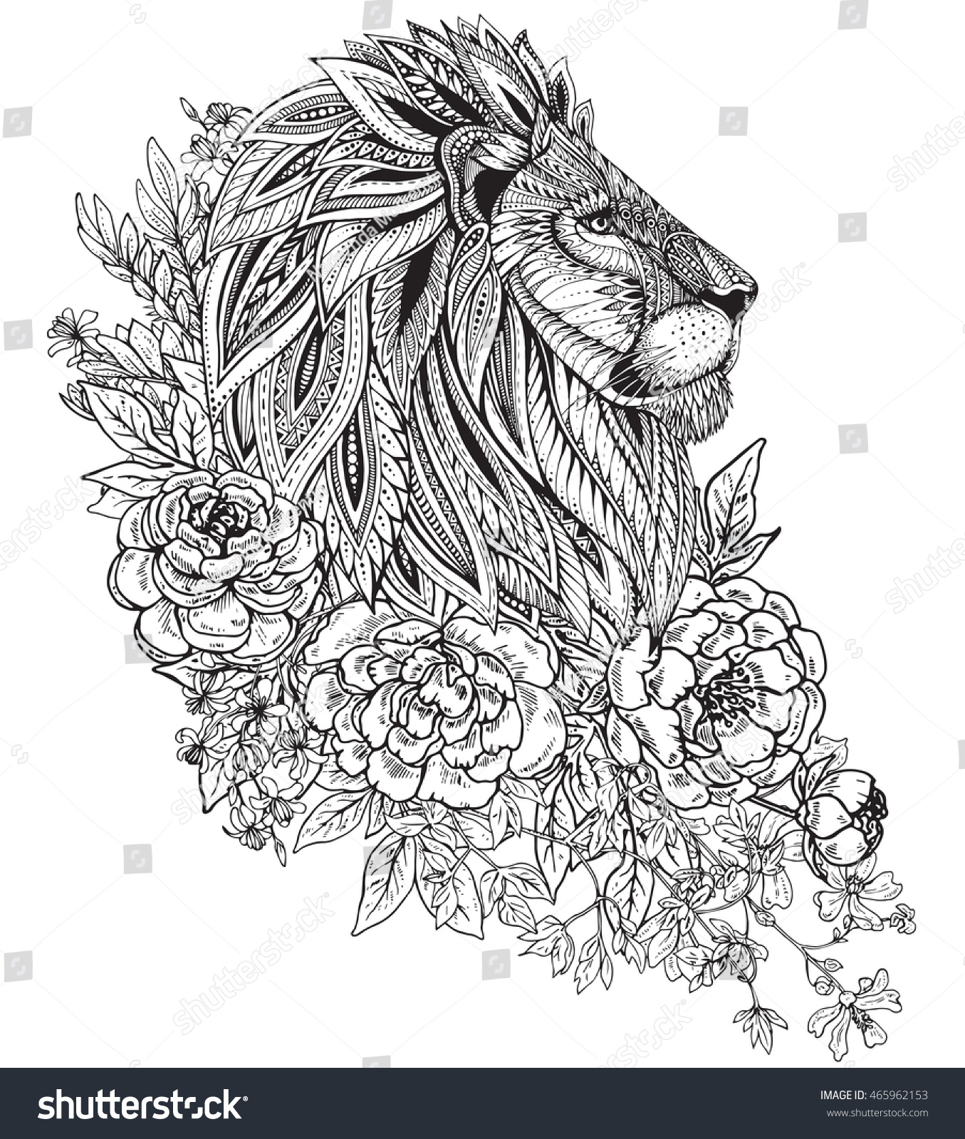 Hand Drawn Graphic Ornate Head Lion Stock Vector