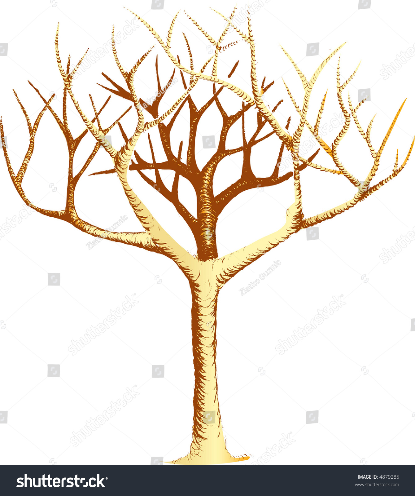 Hand Drawn Vector Tree Without Leaves