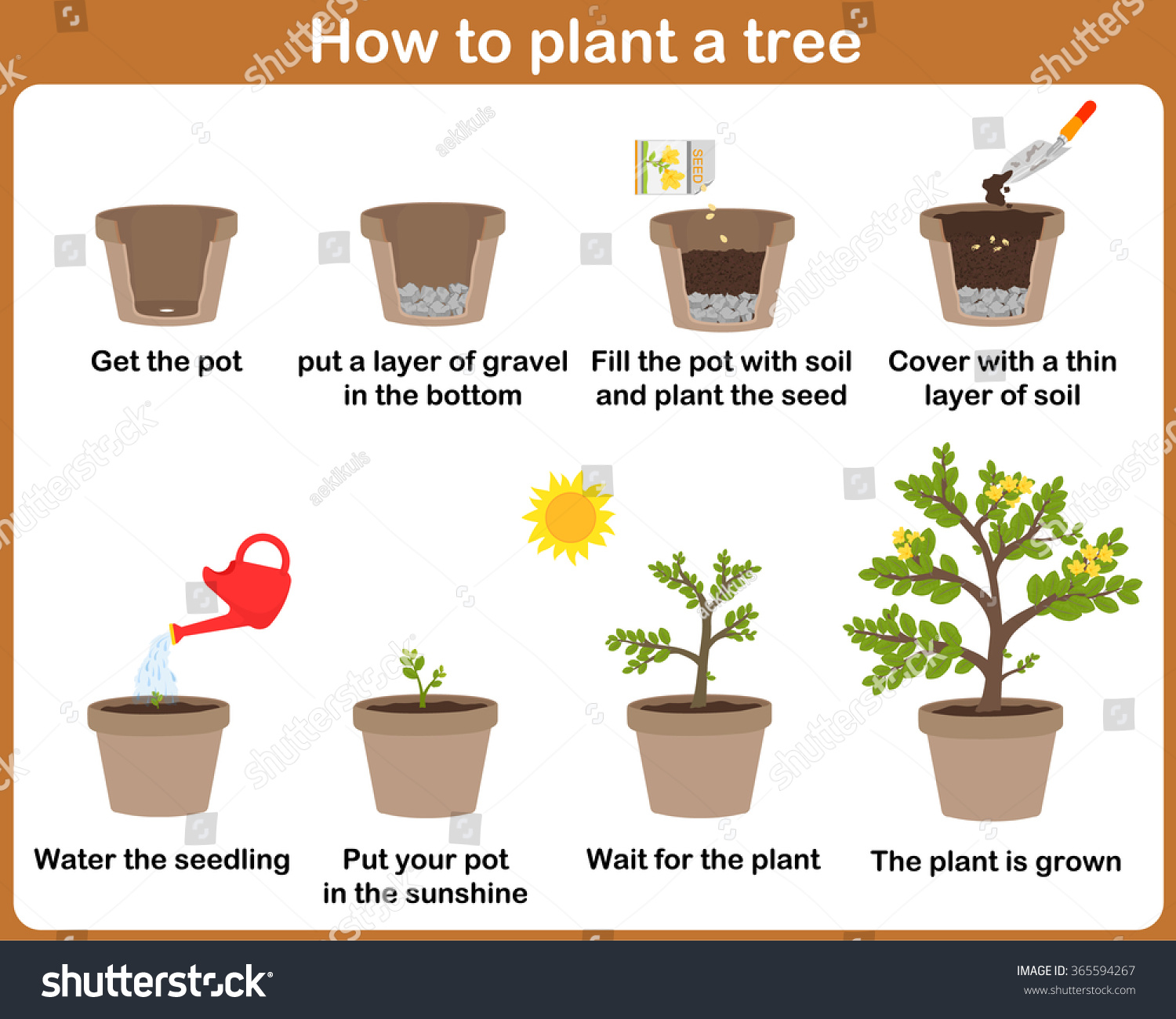 How Plant Tree Easy Step By Stock Vector