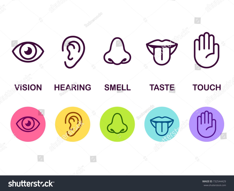 Icon Set Five Human Senses Vision Stock Vector
