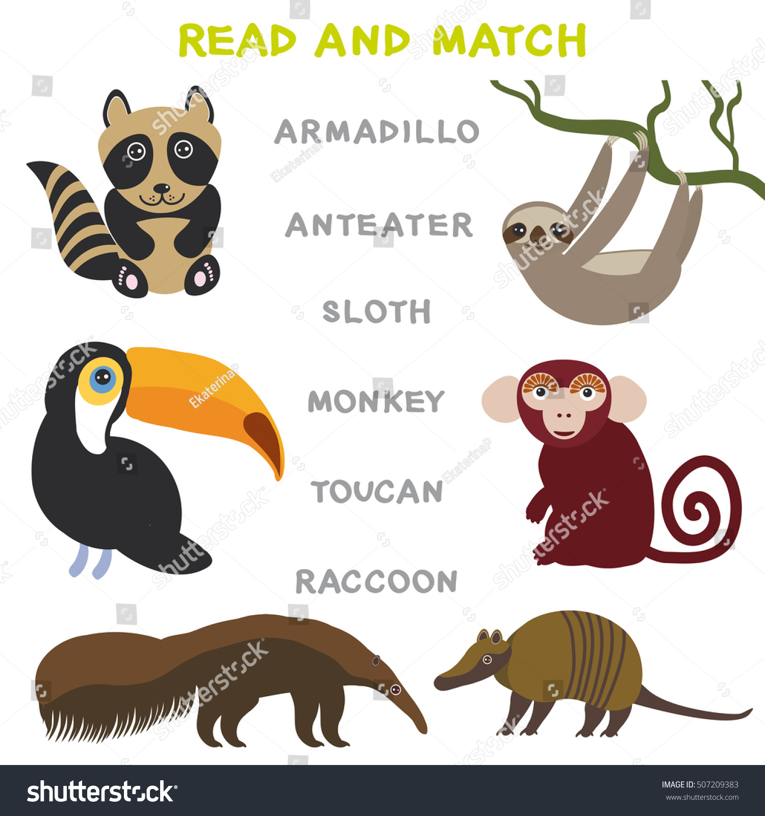 Kids Words Learning Game Worksheet Read And Match Funny Animals Armadillo Anteater Sloth Monkey