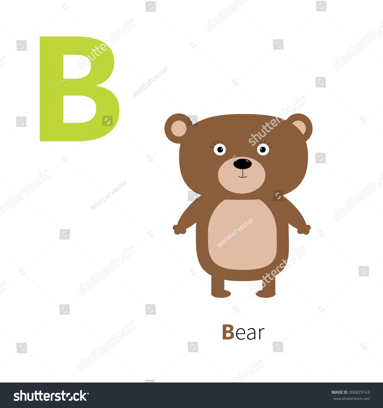 Letter B Bear Zoo Alphabet English Abc Letters With Animals Education Cards For Kids Isolated