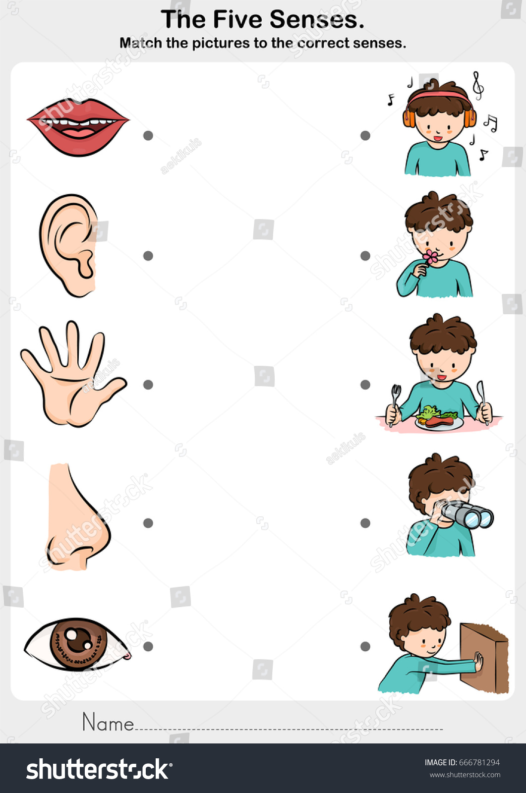 Five Senses Worksheet For Preschool