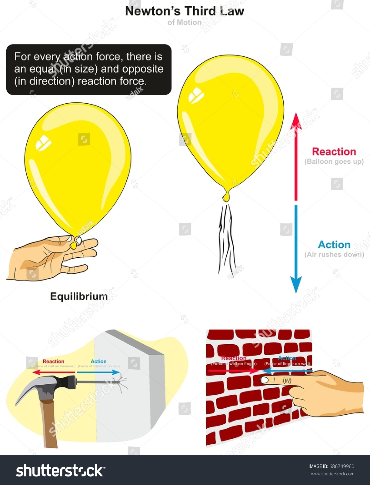 Third Law Motion Infographic Diagram Examples Stock Vector
