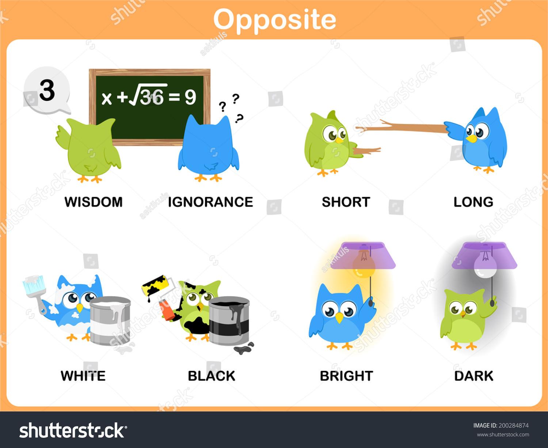Opposite Word Preschool Stock Vector