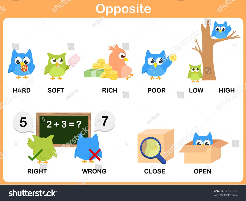 Opposite Word Preschool Hard Soft Rich Stock Vector