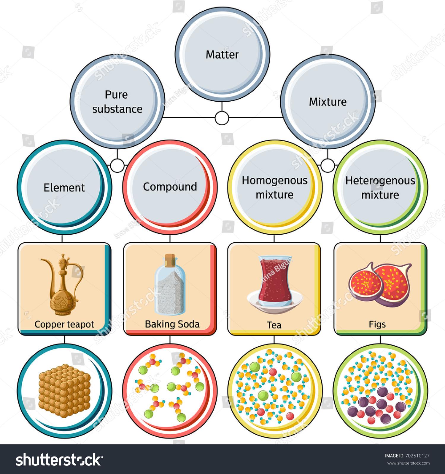 Pure Substances Mixtures Diagram Educational Chemistry