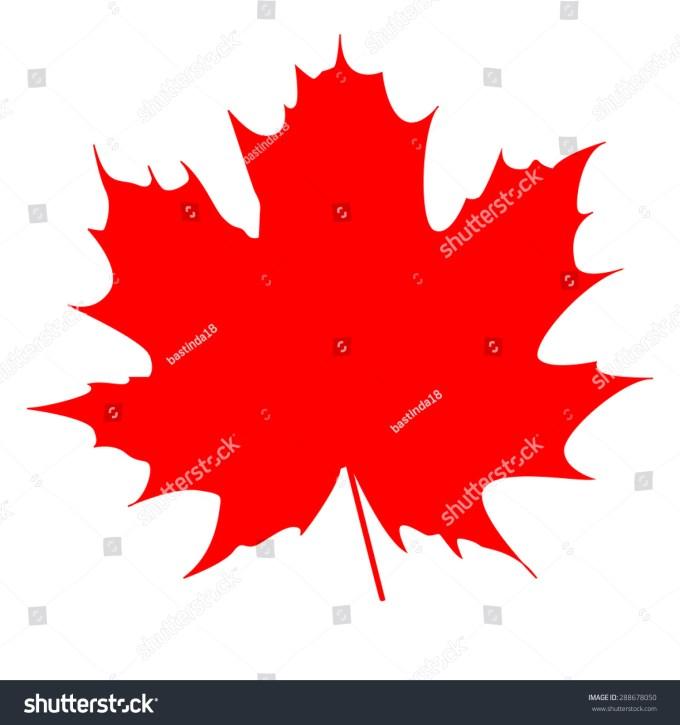 Maple Leaf Symbol Of Canada Zoshwiki