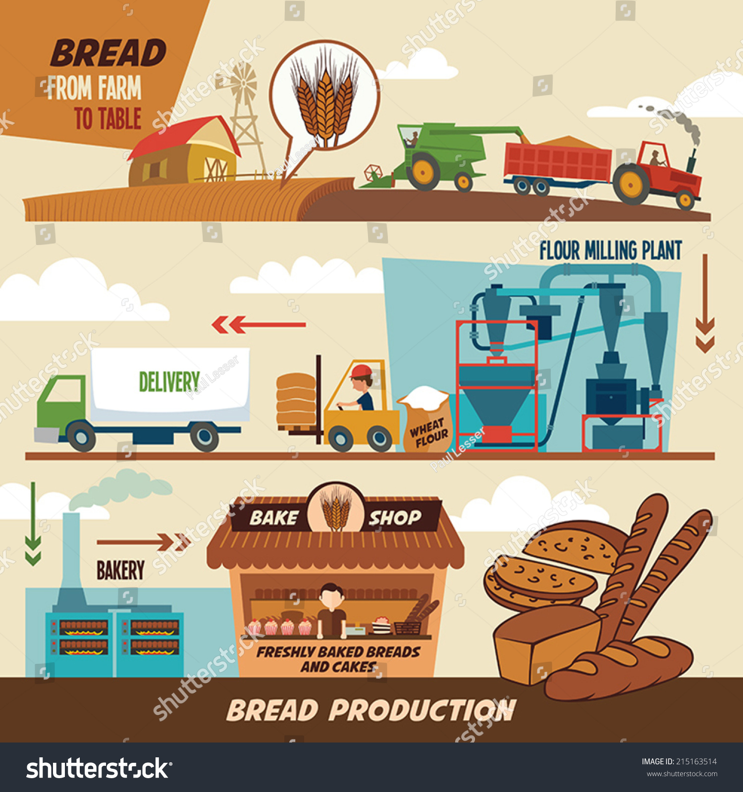 Stages Production Bread Wheat Harvest Freshly Stock Vector
