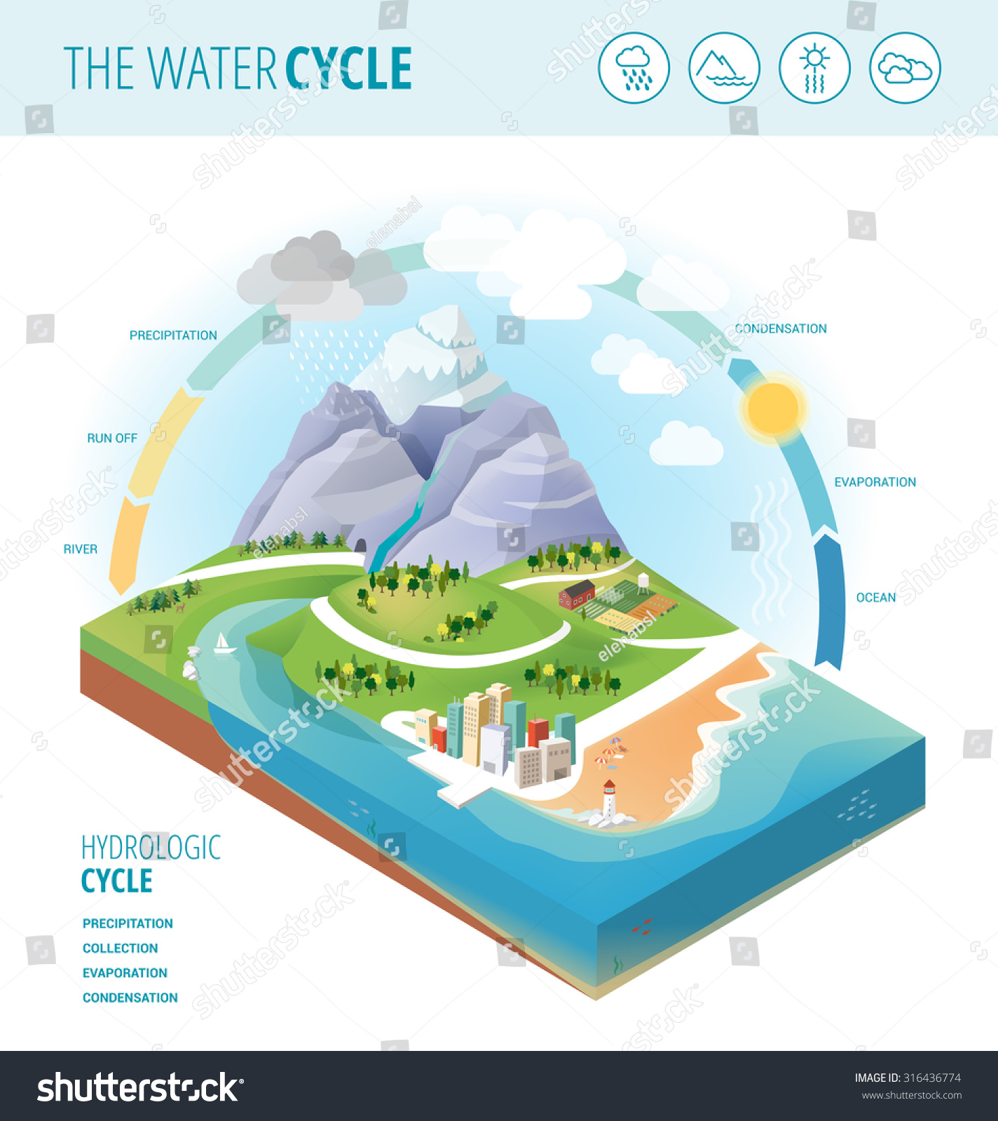 Water Cycle Diagram Showing Precipitation Collection Stock