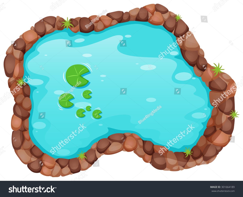 Small Garden Wildlife Pond