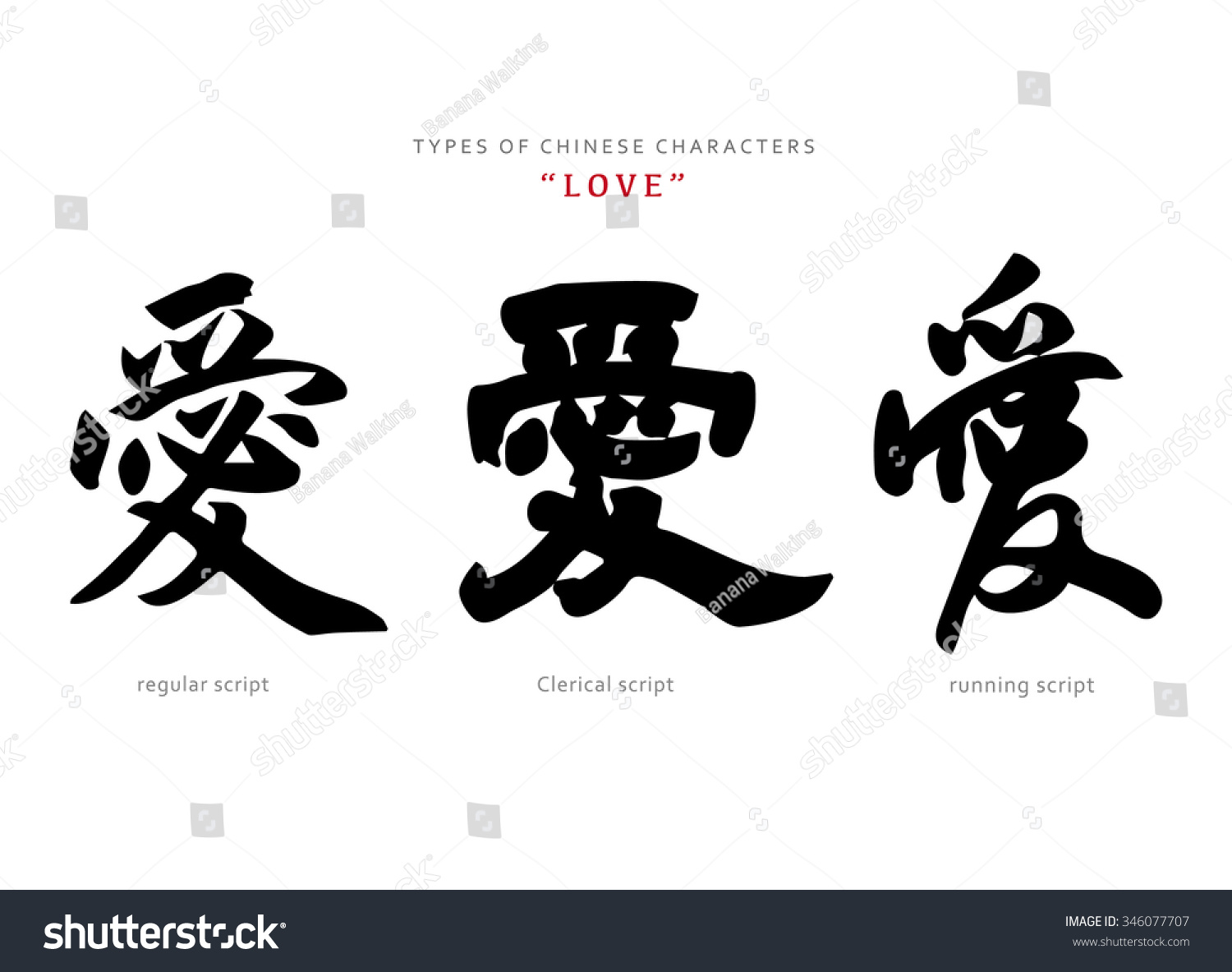 Vector Chinese Letter Calligraphy Hieroglyph Scripts Stock Vector