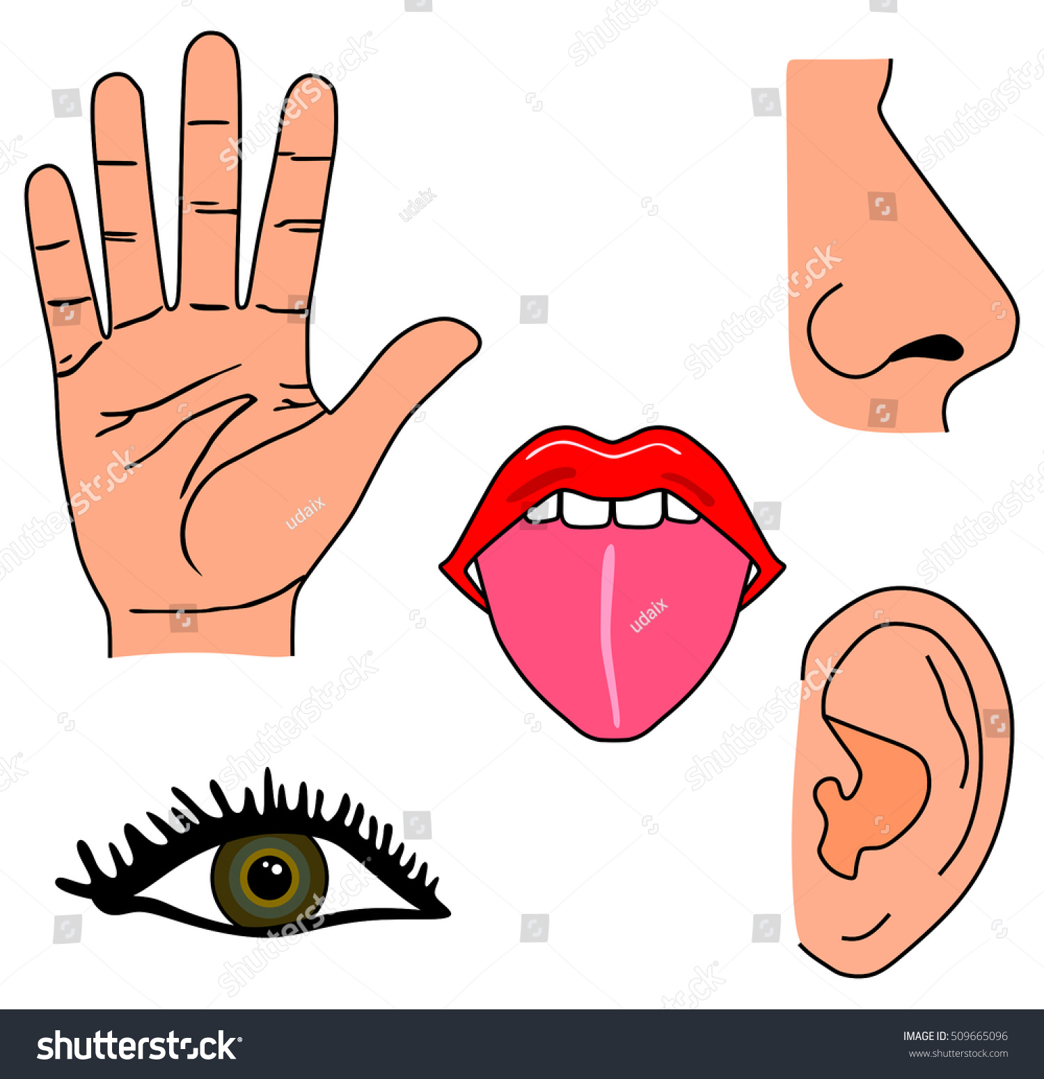 Vector Human Five Senses Set Hand Stock Vector