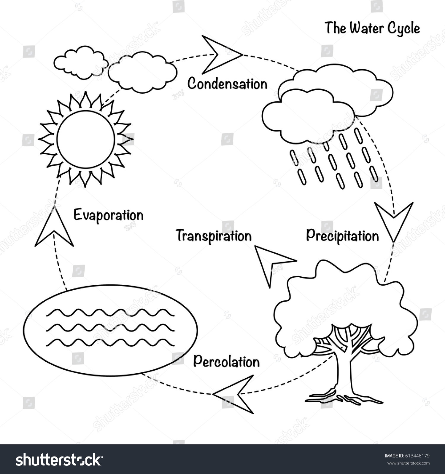 Vector Schematic Representation Water Cycle Nature Stock Vector