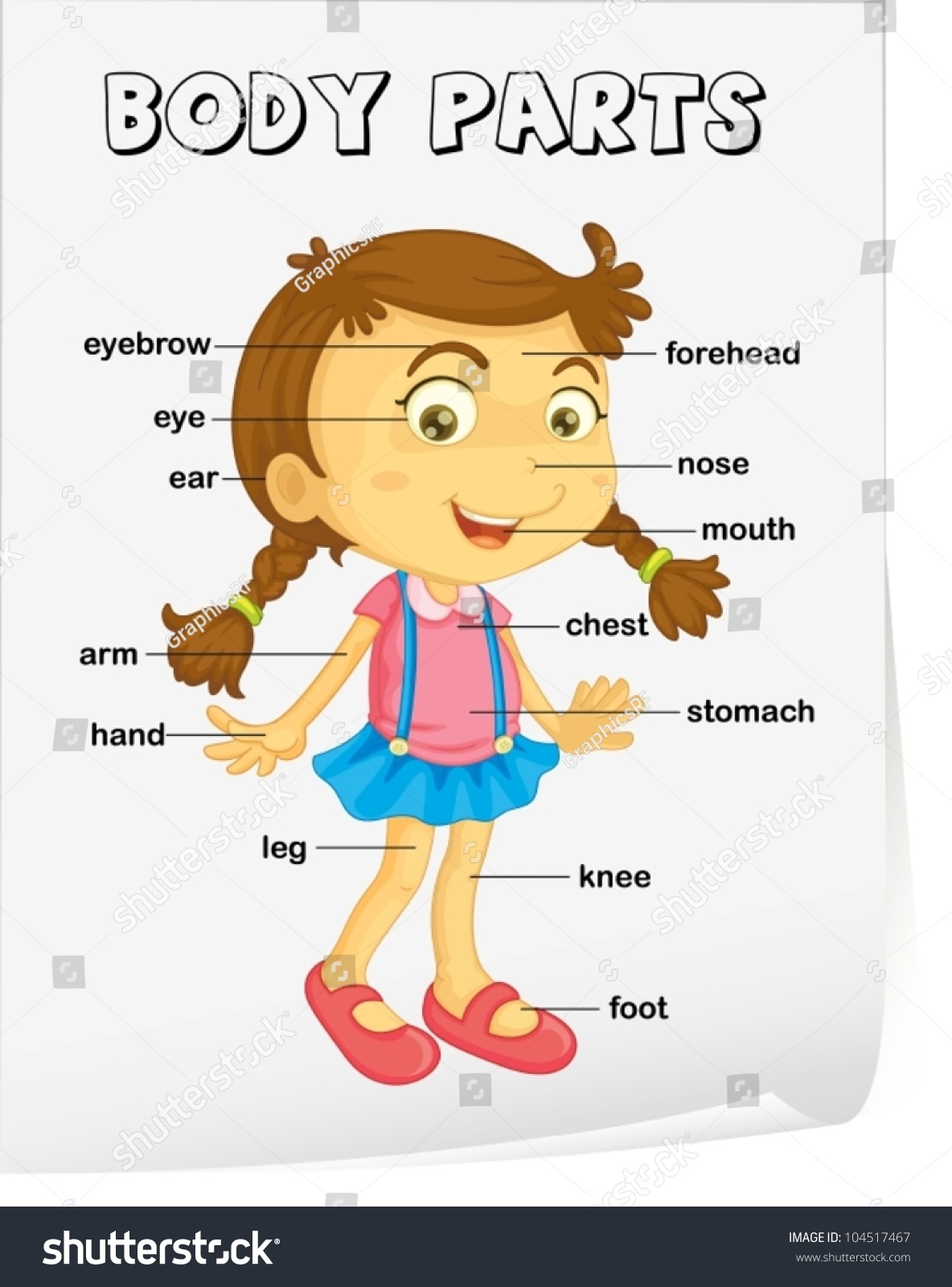 Vocabulary Worksheet Parts Body Vectores En Stock