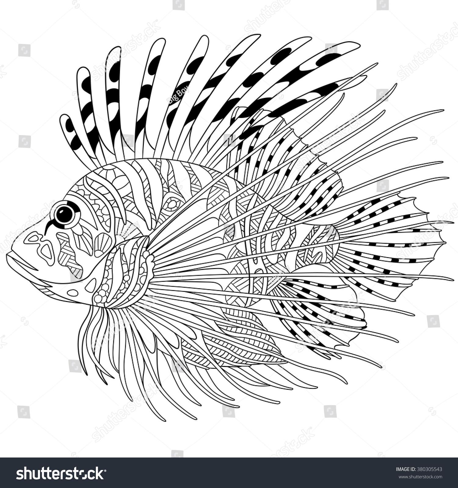 Zentangle Stylized Cartoon Zebrafish Lionfishpterois Volitans