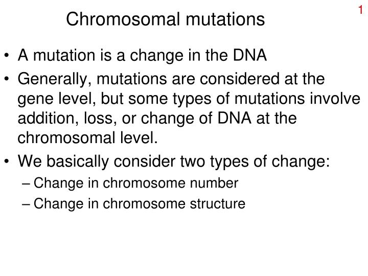 mutations worksheet answer key Order of chromosomal mutations together with Chapter13 worksheets in addition Chromosomal Mutations Worksheet Pleasant Dna Protein Synthesis also Gene Quintano Archives   Wp landingpages   New Of Gene and besides worksheet   Part 4 likewise Chromosomal Mutations Worksheet also Chromosomal Mutations Worksheet Pleasant Dna Protein Synthesis moreover chromosomal mutations worksheet   education   pinterest   worksheets also Middle Mutations Worksheet Valid Worksheet 19 Gene And further Mutations Worksheet 2   Point Mutation   Mutation additionally  in addition Gene And Chromosome Mutation Worksheet   Livinghealthybulletin moreover Chromosomal mutations worksheet  98794   Myscres besides Gene And Chromosome Mutation Worksheet Answer Key moreover LessonPlansInc additionally Gene Mutations Worksheet Answers   Free Printable Worksheets. on gene and chromosome mutation worksheet