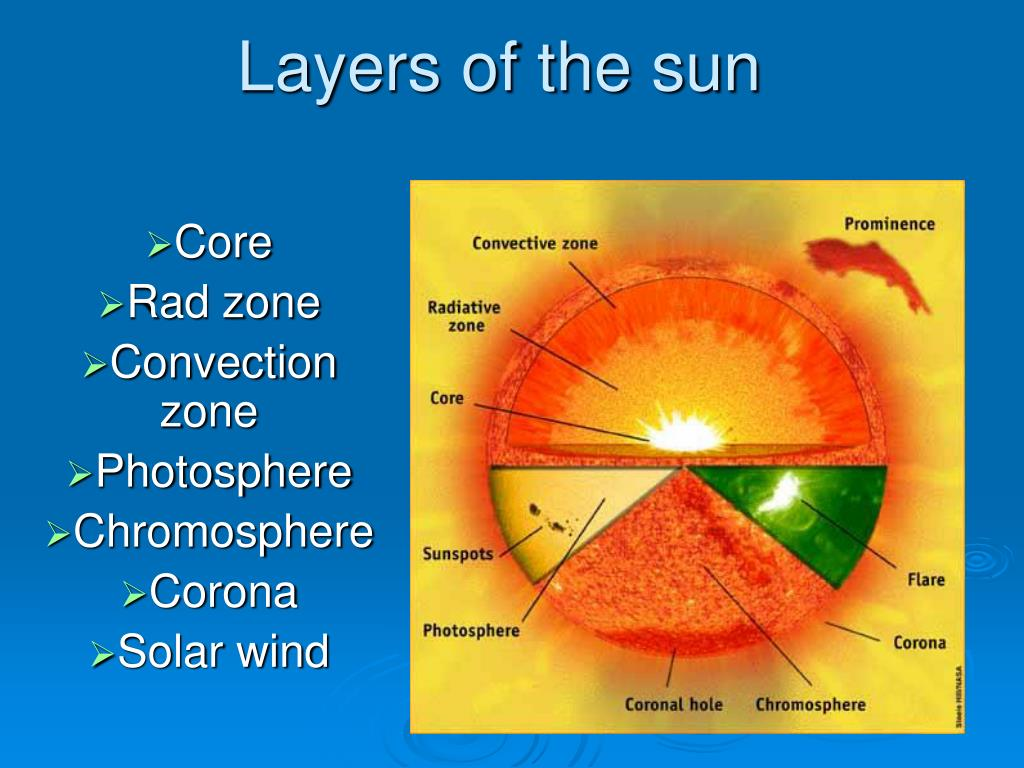 Worksheet Layers Of The Sun Worksheet Worksheet Fun