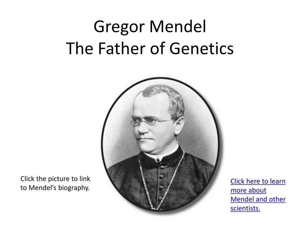 Mendel The Father Of Genetics Worksheet