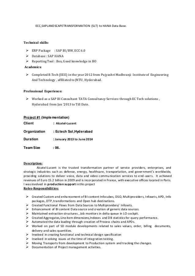 resume resume template security consultant petflog com bi bw resume