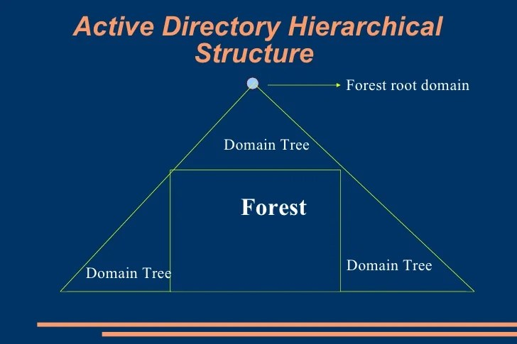 Database Security Hierarchy