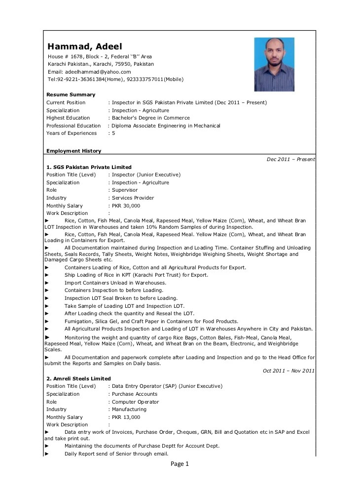 Oil And Gas Resume Builder. Builder Software Resume Template