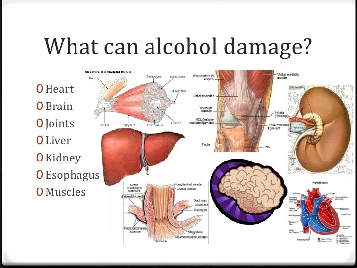 Alcoholism Damage Body