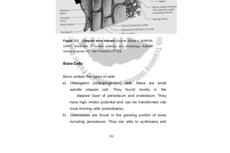 Best Free Fillable Forms » human physiology silverthorn pdf   Free ...