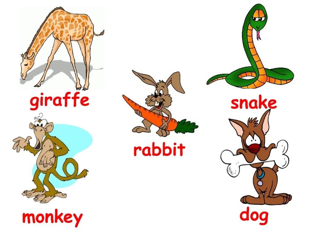 Animals Vocabulary Domestic And Wild Animals
