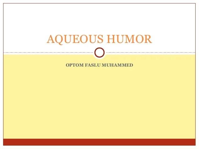 Aqueous Humour Wikipedia