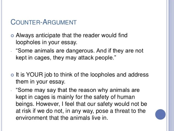 argumentative essay on animal rights