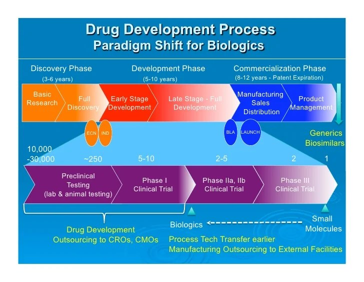Phases In Drug Development Process