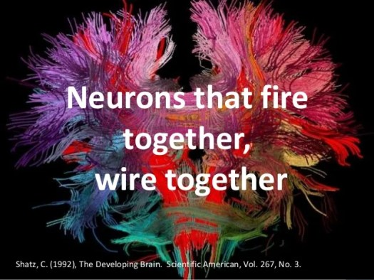 Image result for wire together fire together