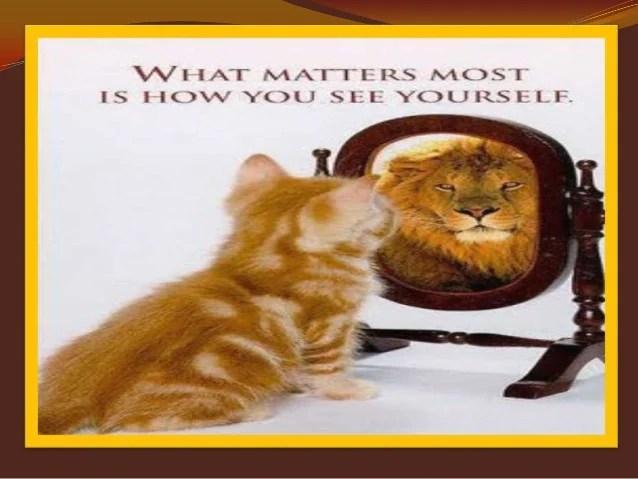 Self Esteem Improvement Program