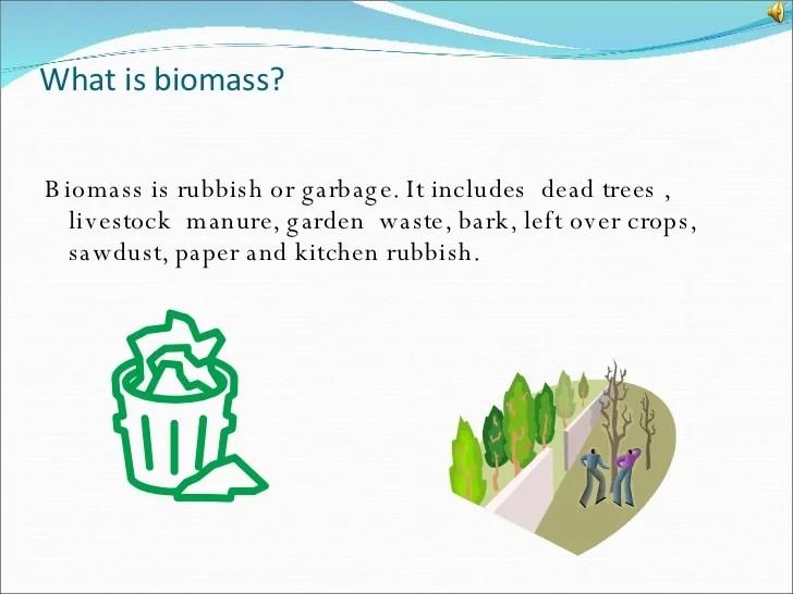 Biomass Power Point
