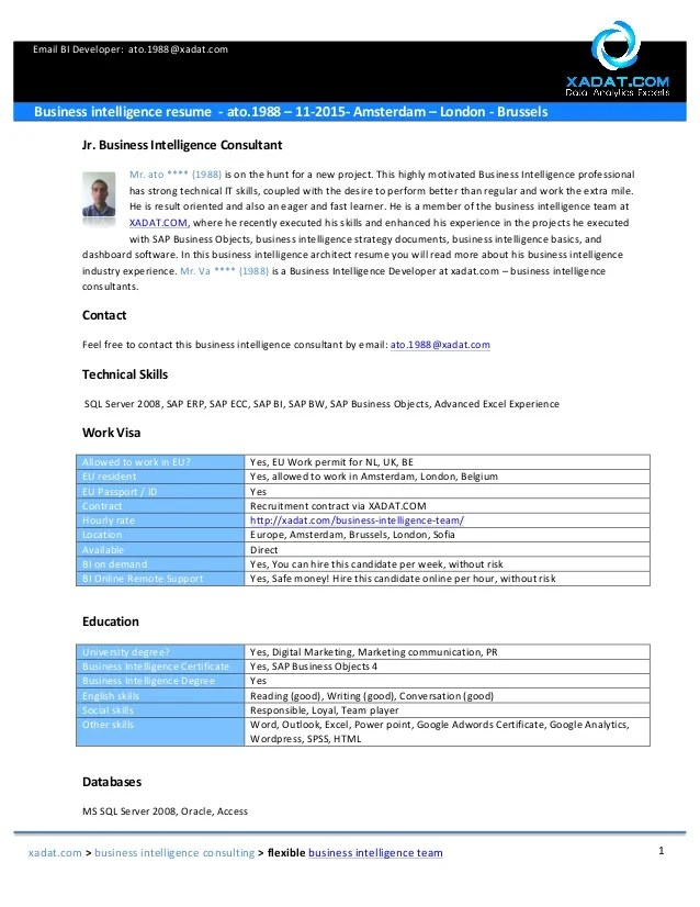 sample bi sap email bi developer business intelligence resume sap bi