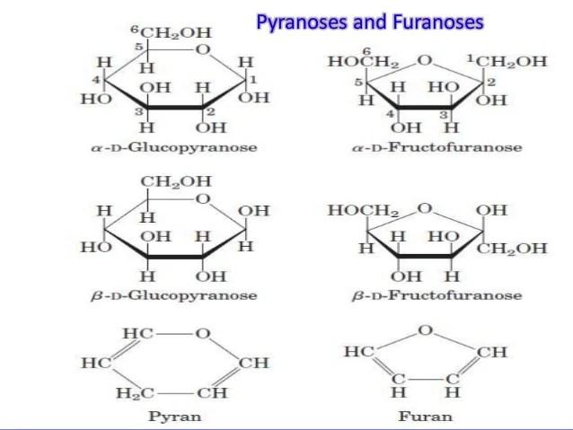 Carbohydrates Carbon Chem