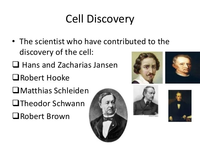 Theory Scientist Contributed Cell