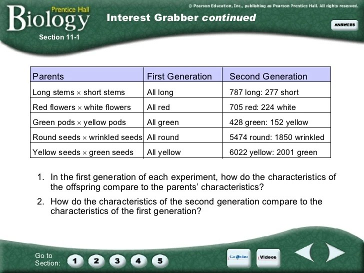 Chapter 11: Introduction to Geics