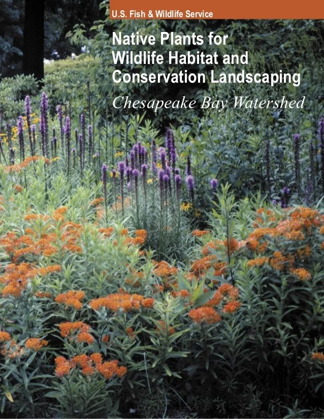 Native Plants Wildlife Habitat And Conservation Landscaping