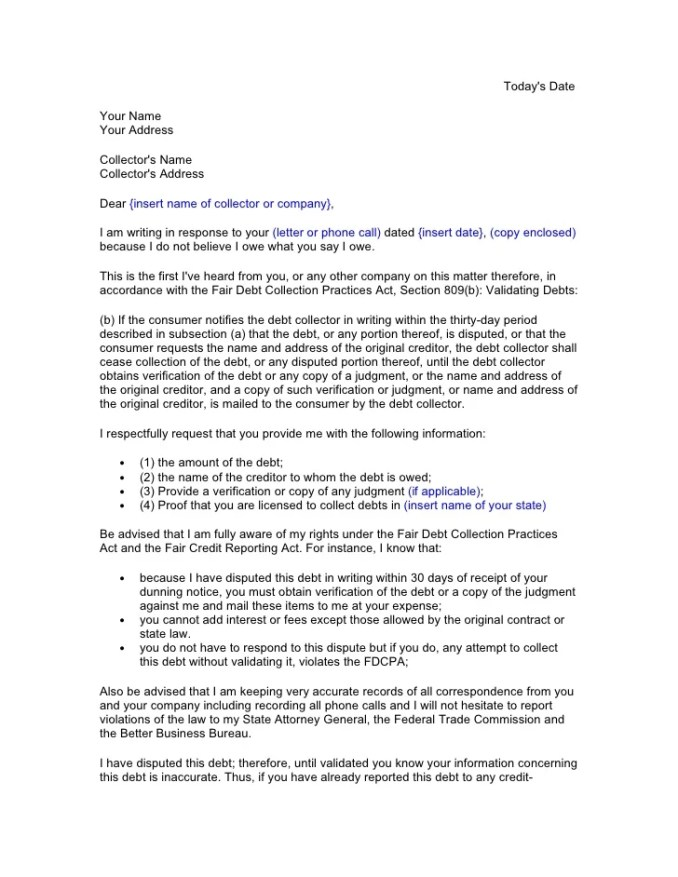 Sample Initial Debt Collection Dispute Letter Inviviewco - Debt dispute letter template