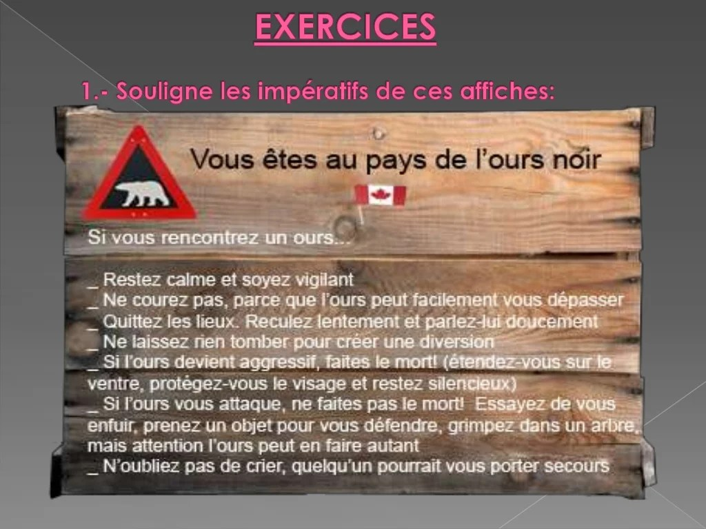 L Imperatif Regles De Formation Et Exercices