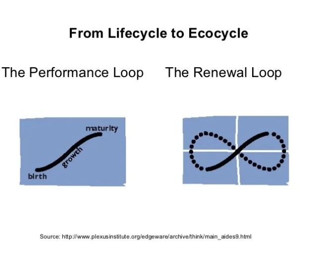 Creative Destruction Renewal 3 From Lifecycle To Ecocycle