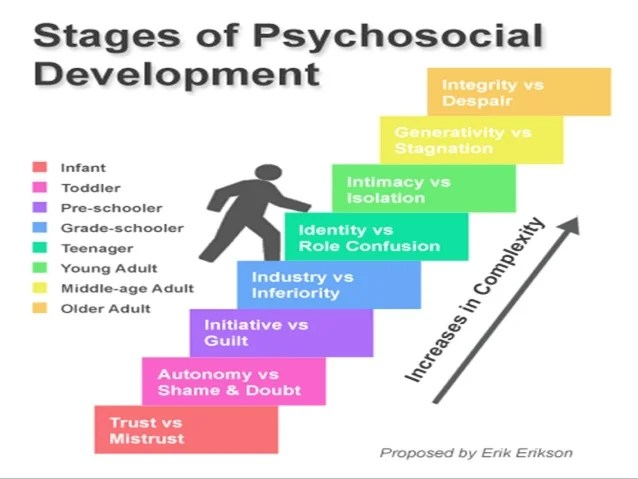 the theories of erik erikson on the stages of psychosocial development Free essay: erik erikson's psychosocial crisis life cycle model - the eight stages of human development erikson's model of psychosocial development is a very.
